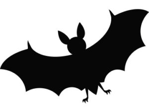 back to Transylvania castle bat