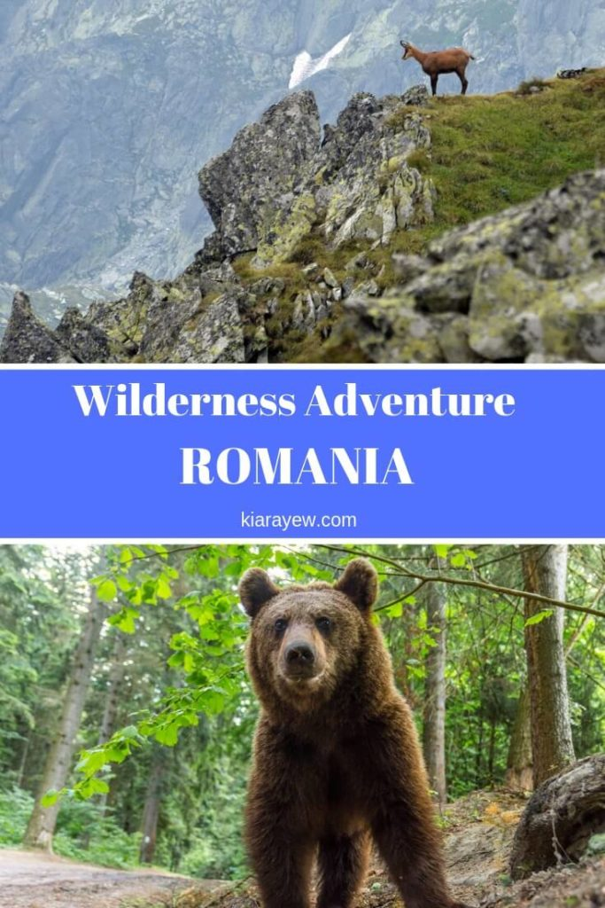 Animals that live in Romania