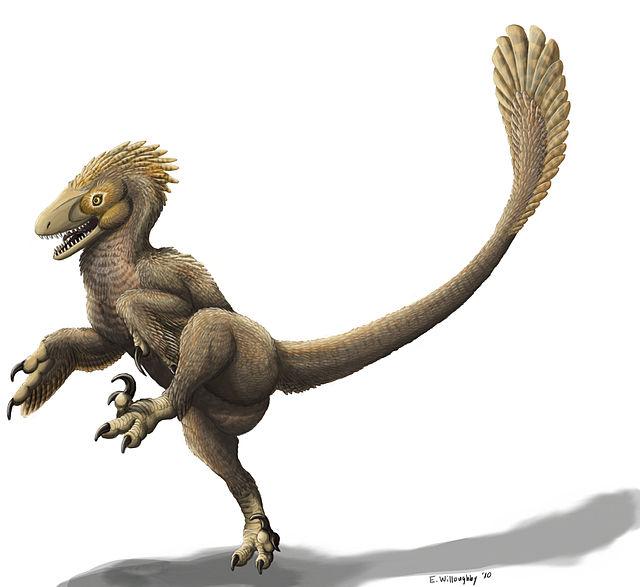 Dromaeosaurid Balaur Bondoc