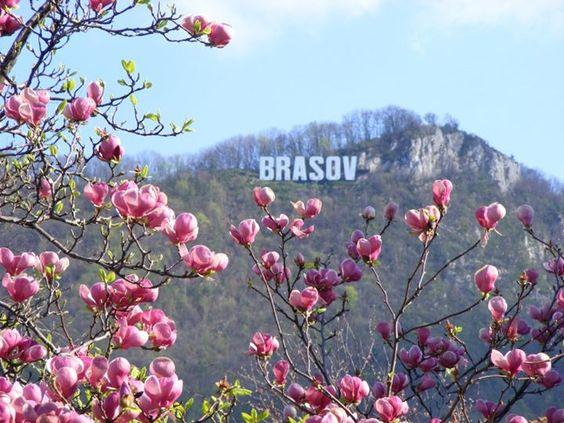Tampa Mountain in Brasov, Romania