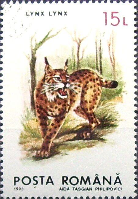 Eurasian lynx romanian postage stamp